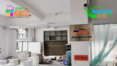 China Raco Wenzhou Heidelberg Printing Manufacturer